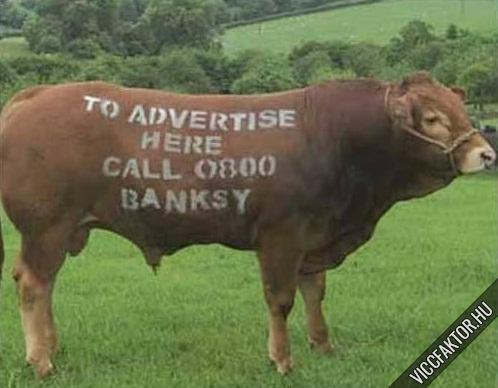 Reklámfelület