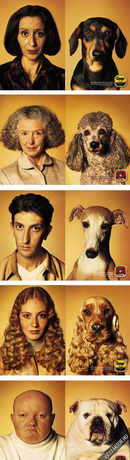Kutyák és gazdáik