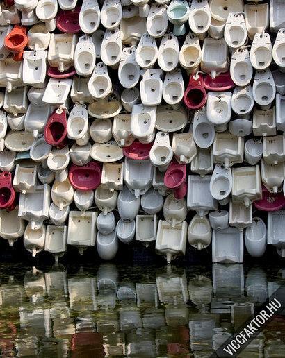 Rengeteg WC