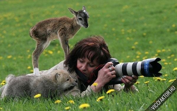 Állatfotózás #1