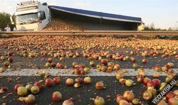 Almát