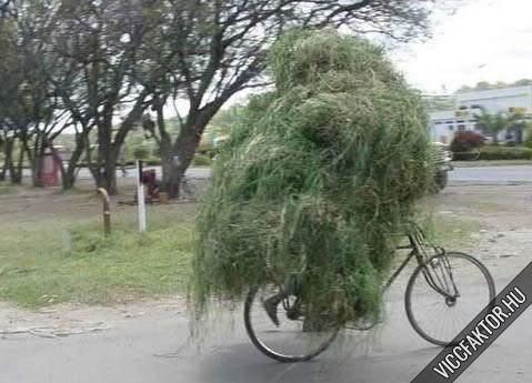 Mi fér el egy biciklin? #2