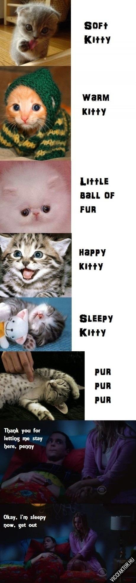 Soft kitty…