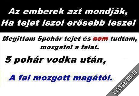 Tej & vodka