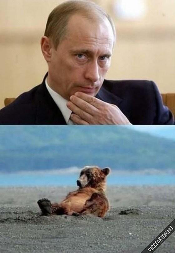 Csőőő Putyin! #1