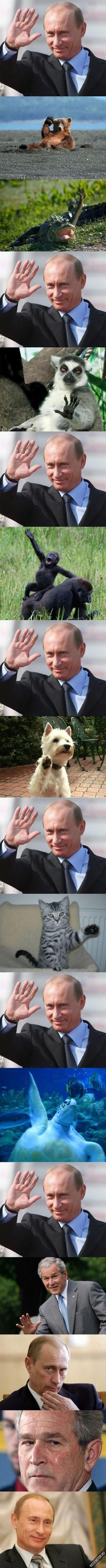 Csőőő Putyin! #2