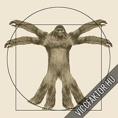 Vitruvius-tanulmányok #2 #2