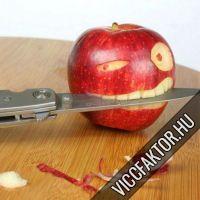 Gyümölcs háború