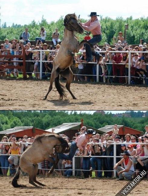 Cowboy kaland