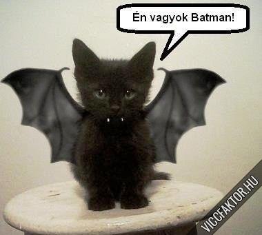 Én vagyok Batman!