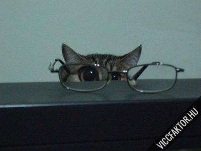 Szemüvegben