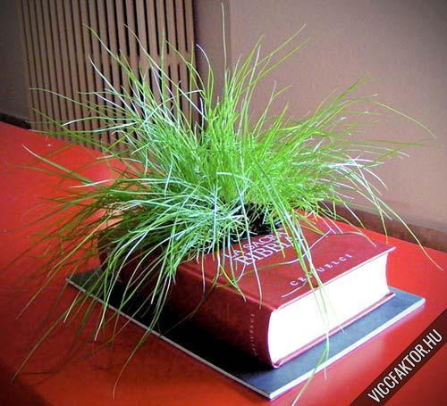 Növénytermesztési könyv