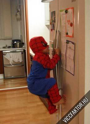 Superman még a hűtőt is megmássza!
