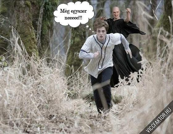 Edward vs Voldemort visszavágó
